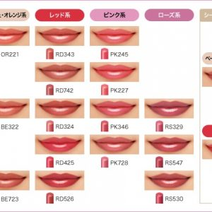 Son Shiseido Maquillage 10