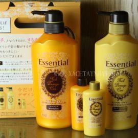 Các loại dầu gội Nhật Bản được ưa chuộng nhất