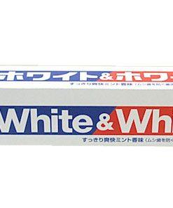 kem danh rang white and white lion nhat ban kem danh rang tot nhat