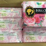 3 loại băng vệ sinh nội địa Nhật tốt nhất 3
