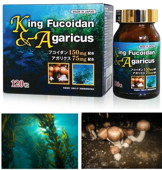 King Fucoidan & Agaricus Nhật Bản là sự phối hợp tuyệt vời giữa Fucoidanvà bột nghiền nấm Agaricus rất giàu vitamin, amino acid, khoáng chất