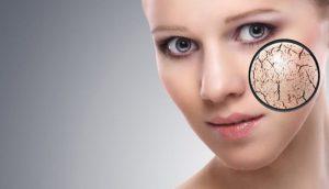 Tế bào gốc phức hợp Elravie Derma 50gr 4