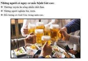 Viên uống The Goutto điều trị gút ,Gout 4