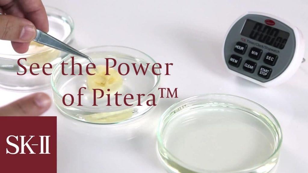 Pitera là gì? Pitera làm nên tên tuổi của Skii như thế nào? 1